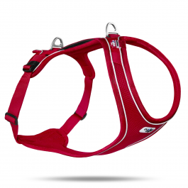 Curli Belka Comfort Harness (Large Dogs)